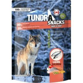 Tundra Skin+Coat Lachs 100g