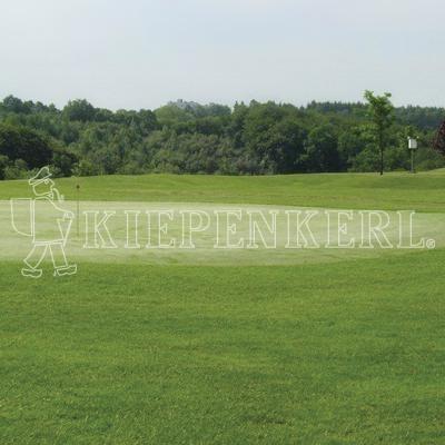 Kiepenkerl RSM 4.2.1 Golfrasen Vorgrün 10kg