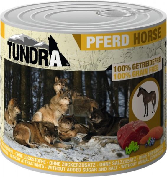 Tundra Pferd