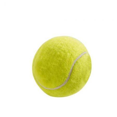 HUNTER Smart Hundespielzeug Tennisball